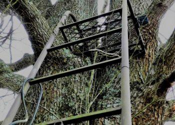 TREESTANDS Y ACCESORIOS