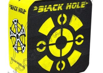 Diana Field Logic Black Hole